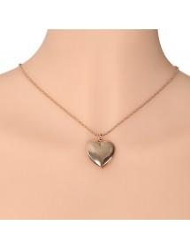 Colier - Blazon de inimă pentru fotografie - Aur