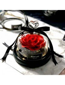 Eternal Red Rose Real Under Glass Bell med lampor