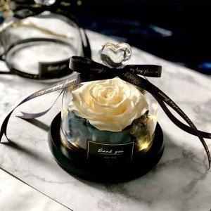 Rose Éternelle Blanche Véritable Sous Cloche en Verre avec Lumières