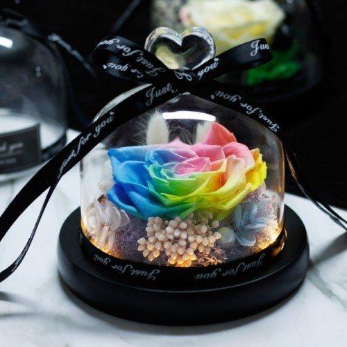 Rose Éternelle Multicolore Véritable Sous Cloche en Verre et Lumières