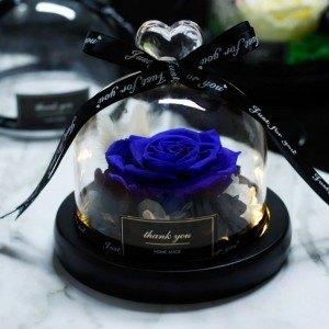 Rose Éternelle Bleue Véritable Sous Cloche en Verre et Lumières