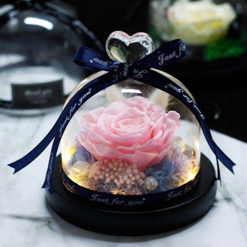 Rose Éternelle Rose Véritable Sous Cloche en Verre et Lumières