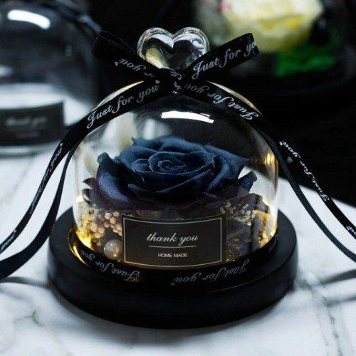 Eterna rosa negra real sob um sino em vidro e luzes
