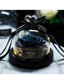 Розово Вечният Черен Автентичен Под Камбаната от Стъкло и Светлина