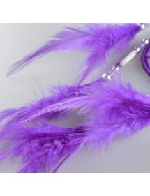 Grabs Sapnis Tradicionālo Violeta 4
