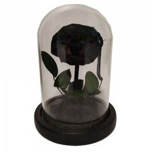 Fleur Rose Éternelle Noire Véritable Premium Cloche Et Boîte Cadeau 2