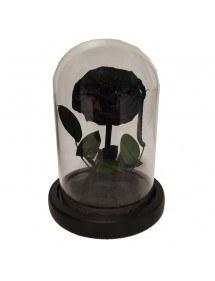 Campanella premium e confezione regalo con fiore rosa eterna nera 2