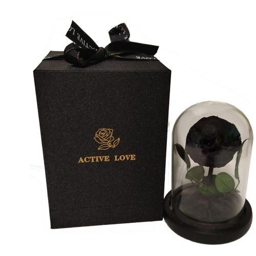 Fleur Rose Éternelle Noire Véritable Premium Cloche Et Boîte Cadeau
