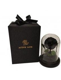 Bellissima campana premium e confezione regalo con fiore rosa eterno nero