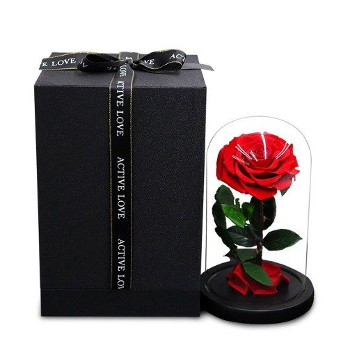 Fleur Rose Éternelle Rouge Véritable Premium Cloche Et Boîte Cadeau