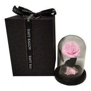 Fleur Rose Éternelle Rose Véritable Premium Cloche Et Boîte Cadeau